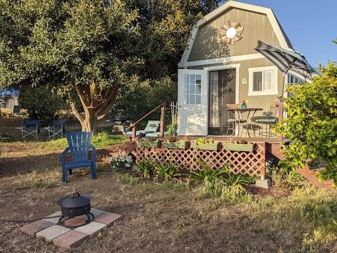 """Tiny Home Living on Exotic Family Fruit Farm"""