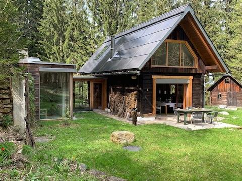 Waldhütte mit Comfort