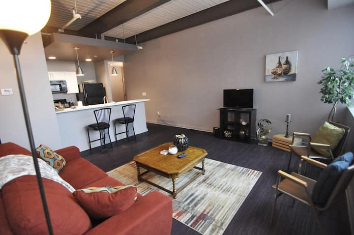 Fully Furnished 2 Bedroom in the heart of CLE #302