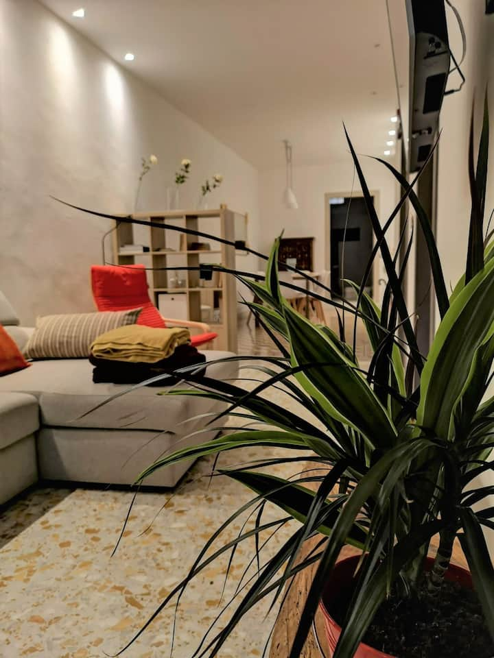 Casa Lola -  historic city center apartment