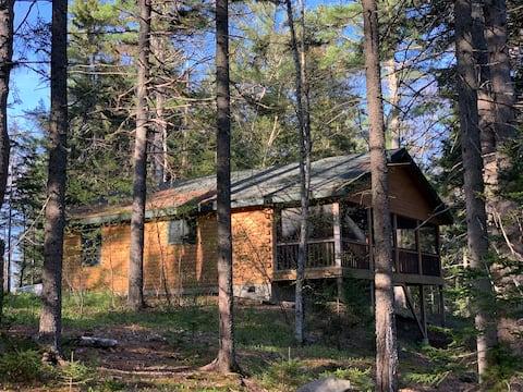 Serendipity Log Cabin