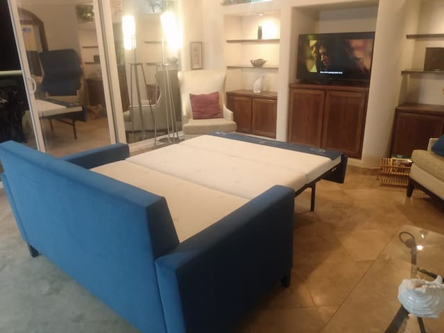 Comfortable living room with full size sofa bed