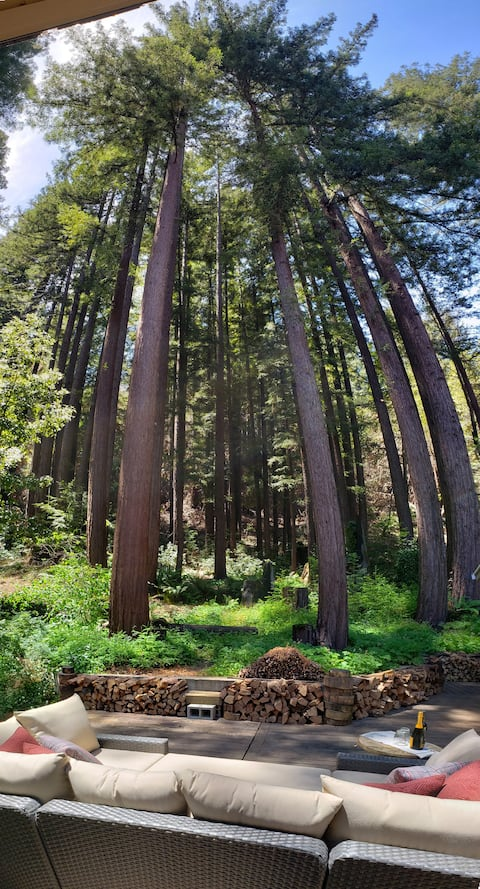 Enjoy Private Redwoods  from Your Bed or the  Deck
