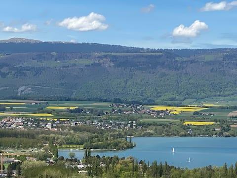 Agréable pied-à-terre avec vue lac et montagne