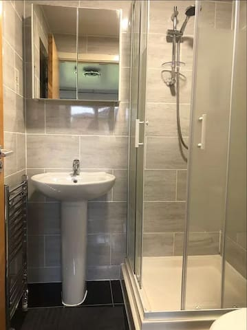 Ensuite shower, toilet and sink