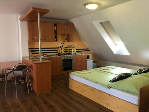 Rodinný podkrovný apartmán - Penzión Antiqua Villa