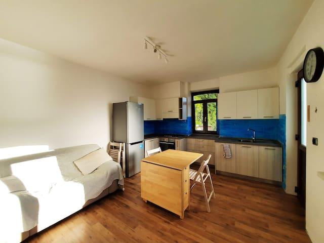 Stanza con soggiorno e ampia cucina, con vista lago