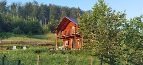 Off-Grid Wooden Cabin by Forest and Mountain River
