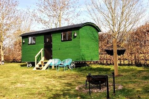 Shepherd Hut - Farm Stay - Glamping