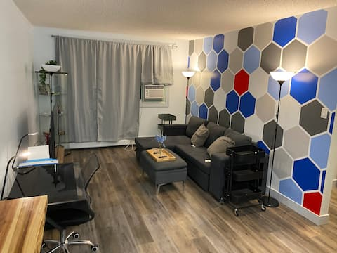 Entire one bedroom apartment with Netflix and A/C