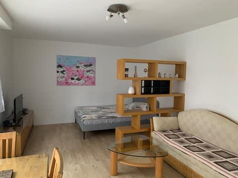 Bright single Apartment 40sqm, fully furbished