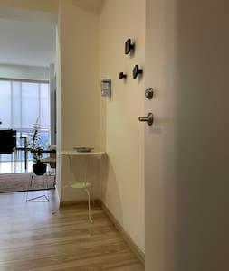 Entrada al departamento, no hay escalones, completamente plano desde el elevador, pasillo y acceso.