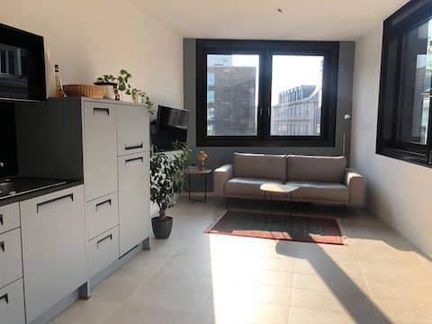 Modernes City Apartment