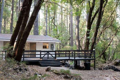 Modern Farmhouse Cabin, in the heart of Cobb MTN