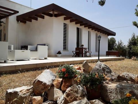 La casa de paja entre los olivos