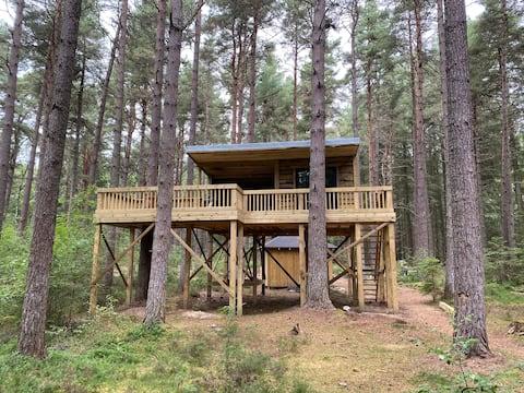 Treetops Tree House Eco Cabin Wildwoodz