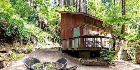 Big Sur Lofted Studio Cabin in the Redwoods!