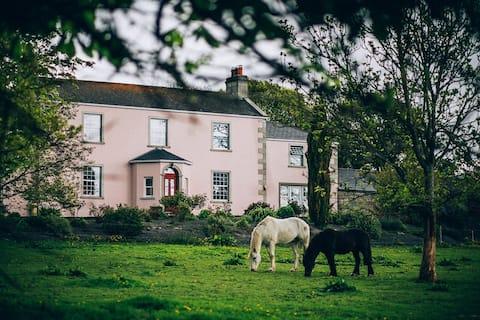 Cosy Cottage near Shillelagh: Parklodge Mews.