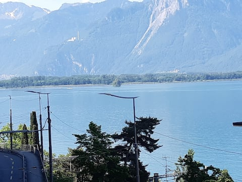 2 steps from lake and Montreux center