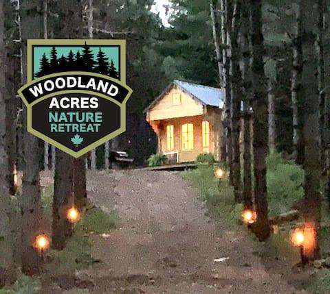 Bunkie de pins chuchotants dans Woodland Acres