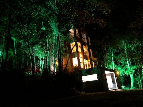 Casa de Campo Rústica em meio as Árvores
