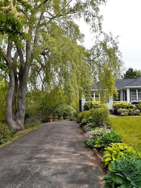 Cove Garden