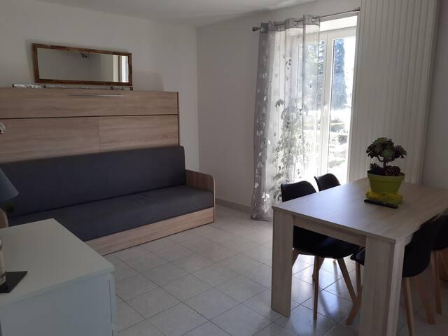 séjour avec un canapé ou est intégré un lit escamotable de 2 personnes ( 140 x 200m)  séparé de la partie canapé- matelas indépendant