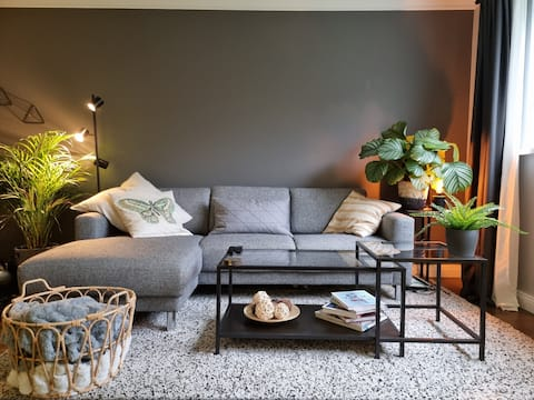 Stylish apartment steps from downtown-Free parking