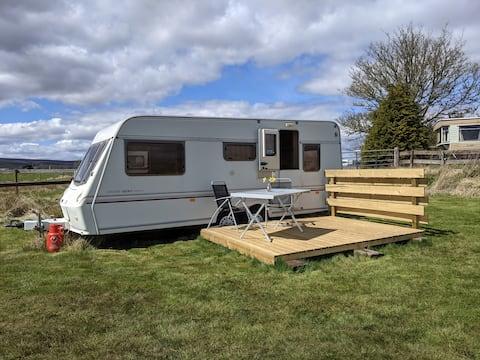 Tin Tent 3 at Pondside!