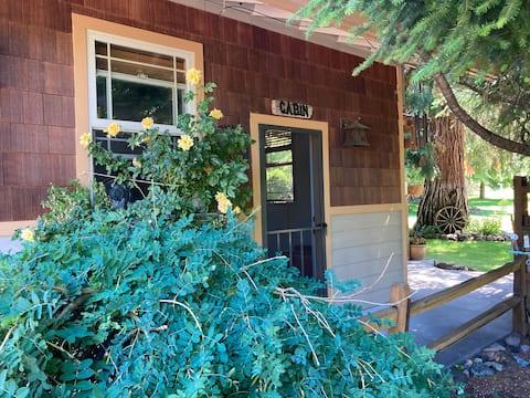 Cozy Studio in Mt. Shasta; quiet, garden setting.