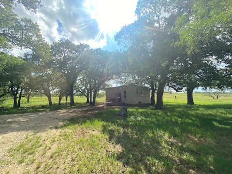 Relaxed stylish cabin with your own horse paddock