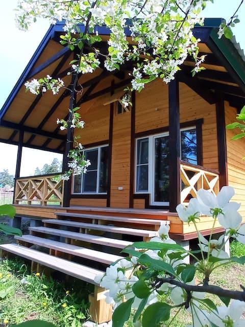 Дом на берегу Катуни