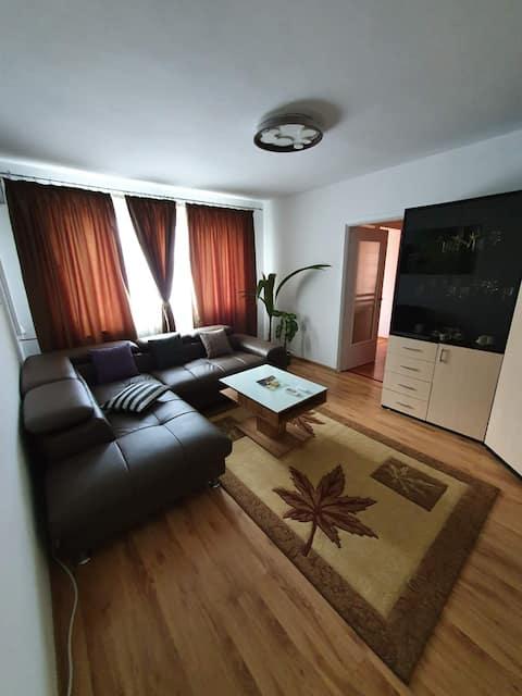 Apartament in regim hotelier Dr. Tr. Severin