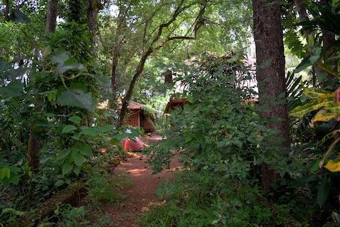 Lakshmi Nivas Studio Homestay
