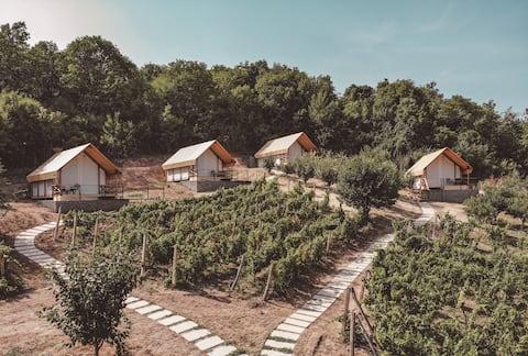 Lala Vineyard Glamping Resort