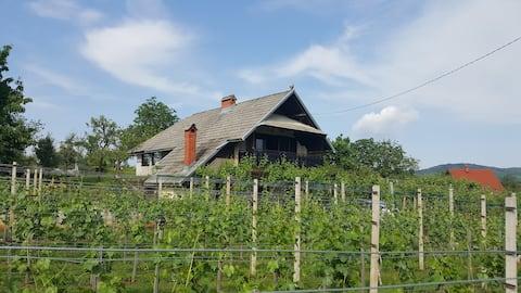 Cottage near river Kolpa, vineyards,top location.