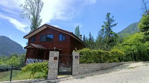 Gemütliche Villa im Wald 6 km von Çıralı entfernt.