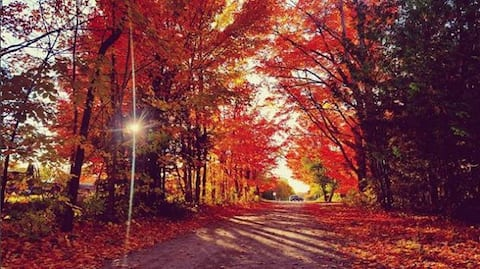 Fall Colors and Beaches Cozy three bedroom stay.