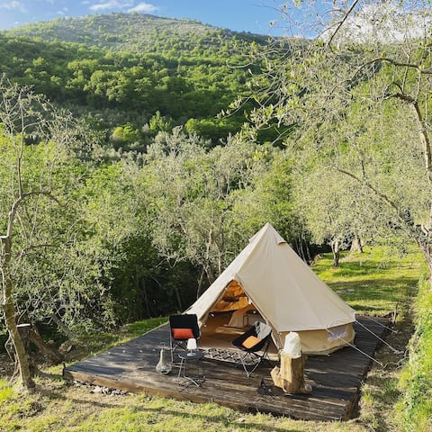 Relax in tenda in un tipico uliveto ligure