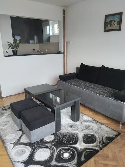 Beautiful apartment with garage in Centar