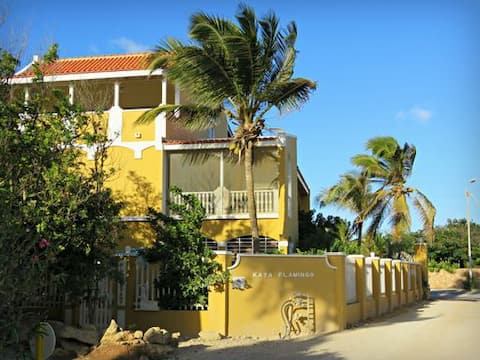 Kas Kibrahacha Studio Well situated and cosy