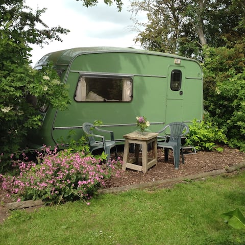 1980's 1 Bed Caravan set in Small Wooded Area.