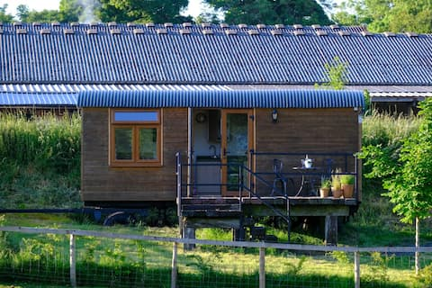 Country Shepherd's Hut with double bed & en-suite