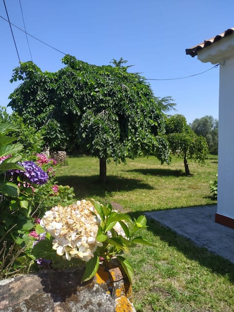 Agradable chalet con barbacoa y 500m2 de jardín