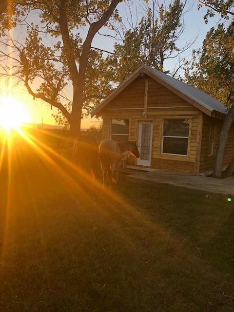 Rocky view cozy cabin