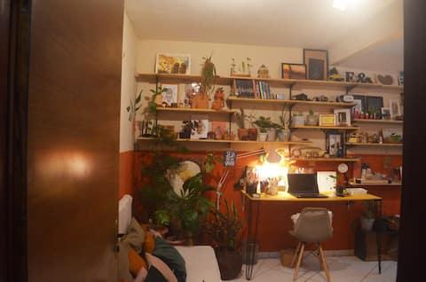 Casa Arte Viva