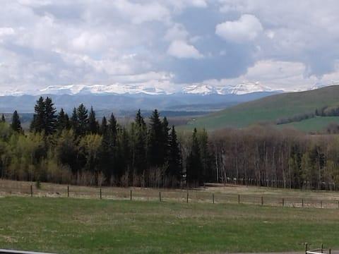 Mountain view eco farm