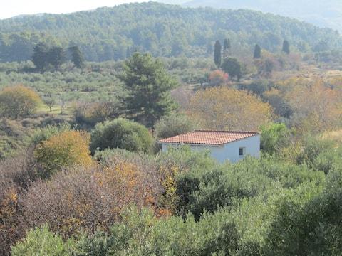 Asklipion Valley guest house - BIRD HOUSE