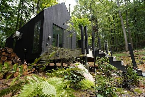 Black Scandinavian Barn Style Cabin
