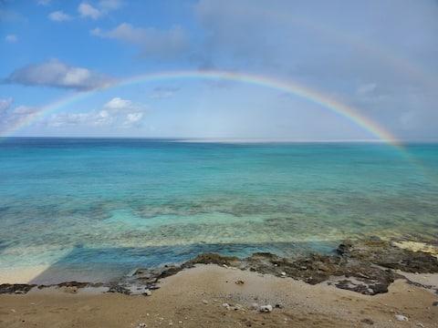 Rainbow Beach Dreams